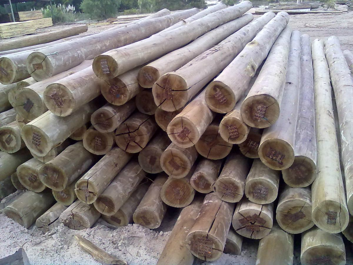 Productos impregna concordia s a - Postes de madera tratada ...